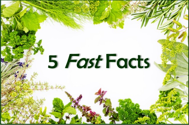 five-fast-facts